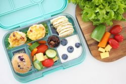 انواع ظروف برای غذای کودک